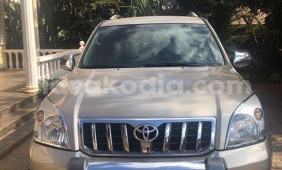 Acheter Voiture Toyota Land Cruiser Prado Gris à Antananarivo en Analamanga